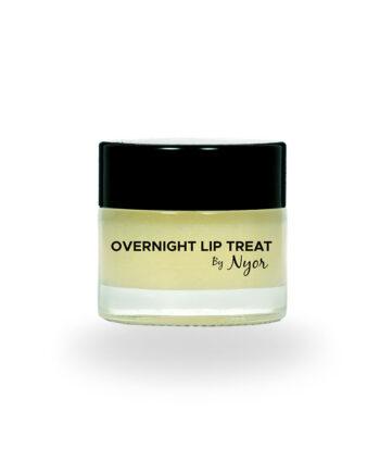 Overnight Lip Treat
